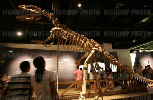 上海科技馆 6月9 10日上海二日 购物游高清图片