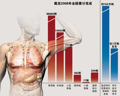 人体各脏器分布�_我国宣布启动建立人体器官捐赠