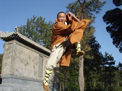 少林寺传奇1图片