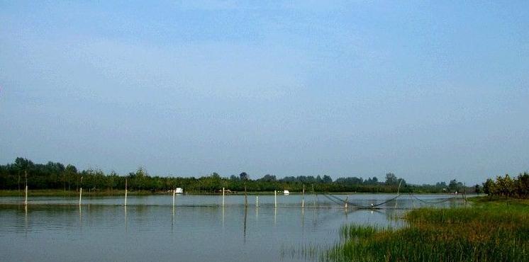 黄河故道湿地自然保护区