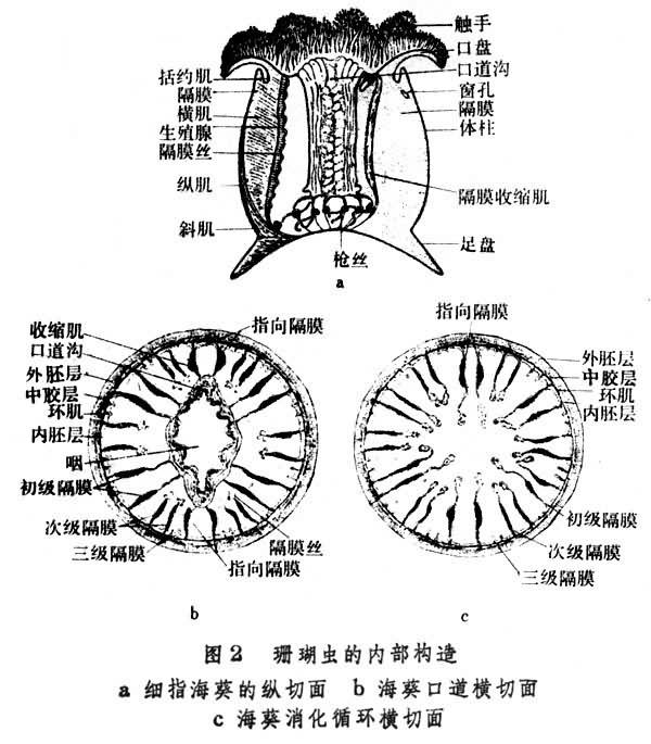 抽屉锁的内部结构图图片下载 抽屉锁的内部结构图 ...