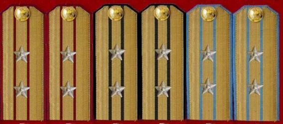 中国人名解放军肩章图片大全 资料 中国人民解放军领花,领章
