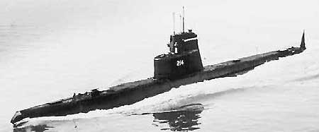 里斯本丸沉船事件-国际营救