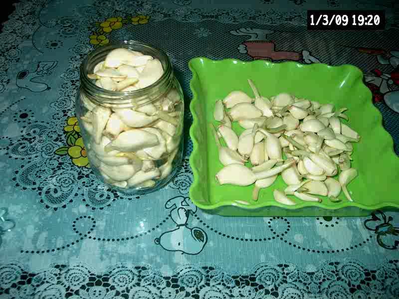 腊八蒜的成品照片 高清图片