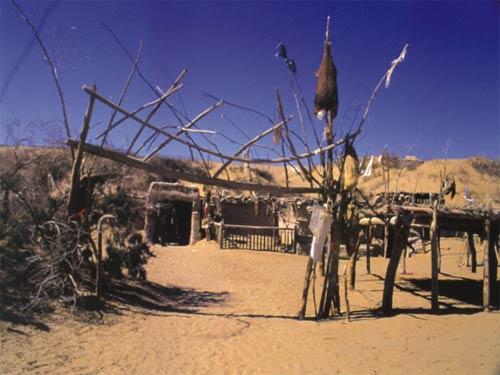 位于塔克拉玛干沙漠的尼雅遗址照片