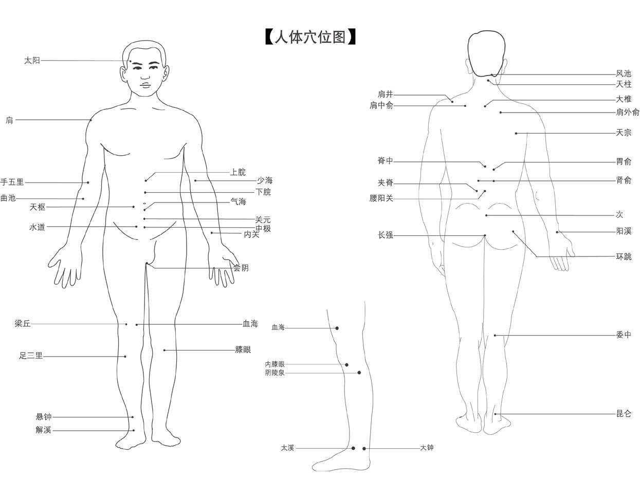日本最大胆人体性囹d)_脑性瘫痪的拔罐疗法——人体穴位图