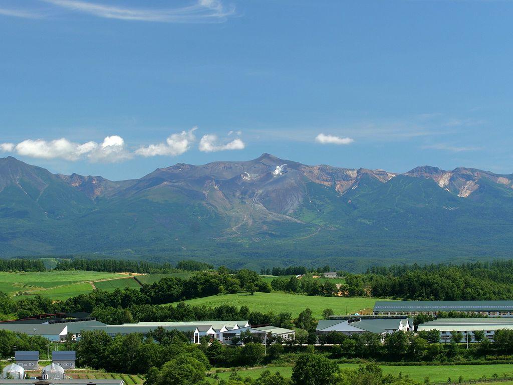 北海道田园美景壁纸 北海道郊外景色, 田园野外蓝天草地,大 高清图片