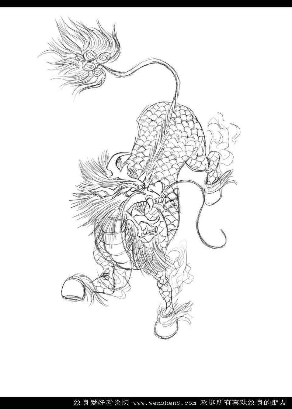 画麒麟_名称:宁波麒麟纹身 【2012