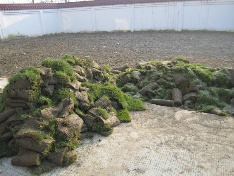 草皮其中一堆,看着简单,两块草坪扛起来重.然后一点点铺.高清图片