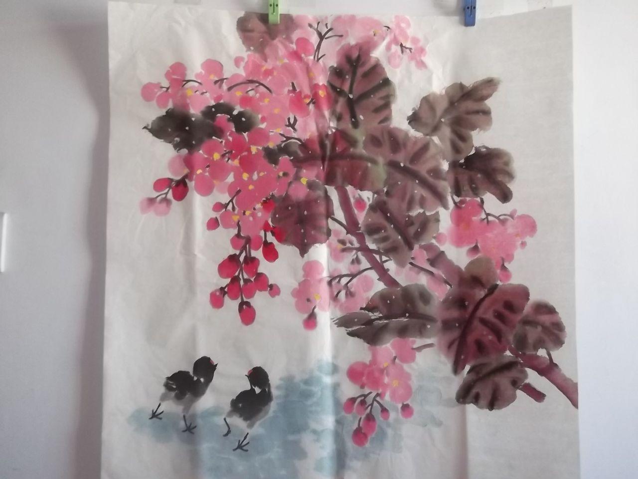 我的花儿,我的鸟儿图片