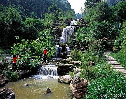 转贴:大岭山森林公园(介绍及图集)图片