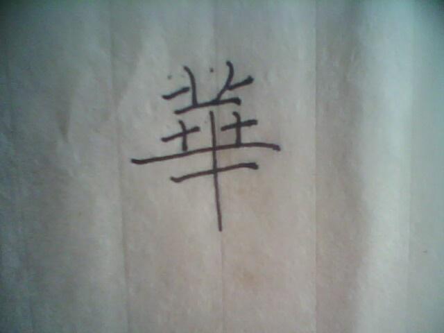 【求助】华字的笔画顺序-华的笔画顺序 华华 华的笔顺 华的笔画