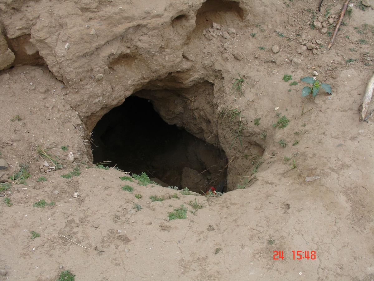 丰镇大量古墓被盗,有关部门该抓紧了图片