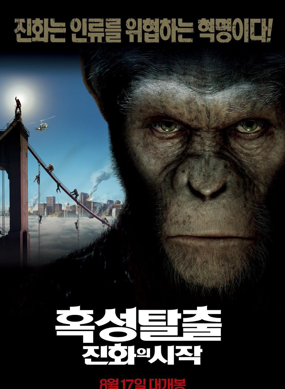郭政鸿通臂猿猴
