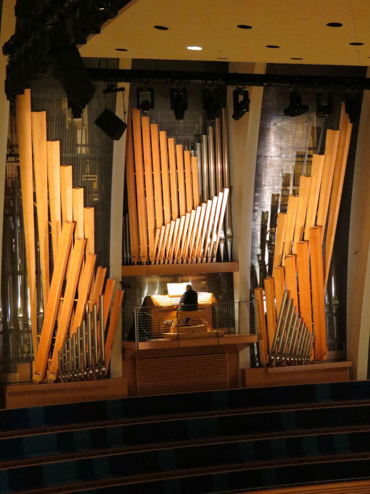倾斜音管的管风琴-沈凡秀图片