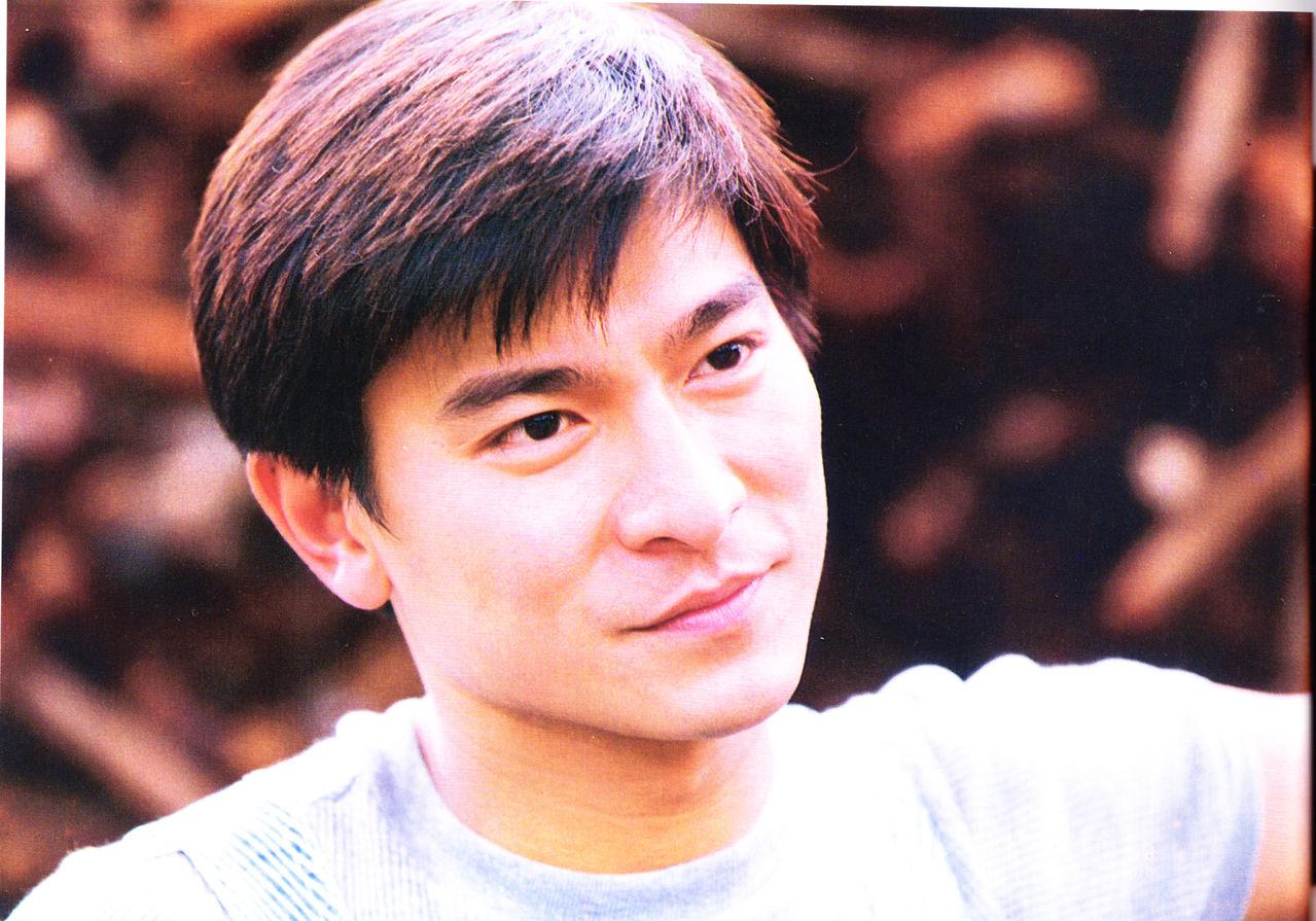 刘德华最帅的发型图