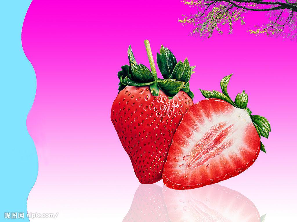 草莓种子发芽初期图片