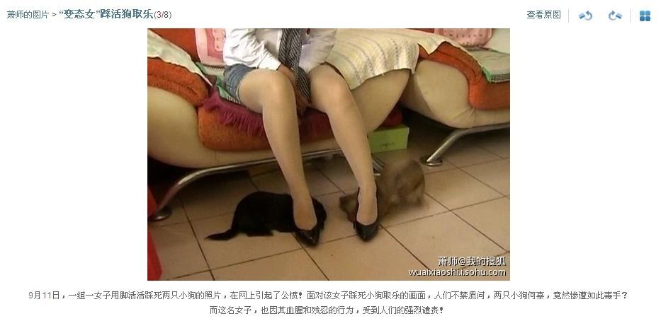 变态美女踩猫美女踩猫踩猫的图片美女踩