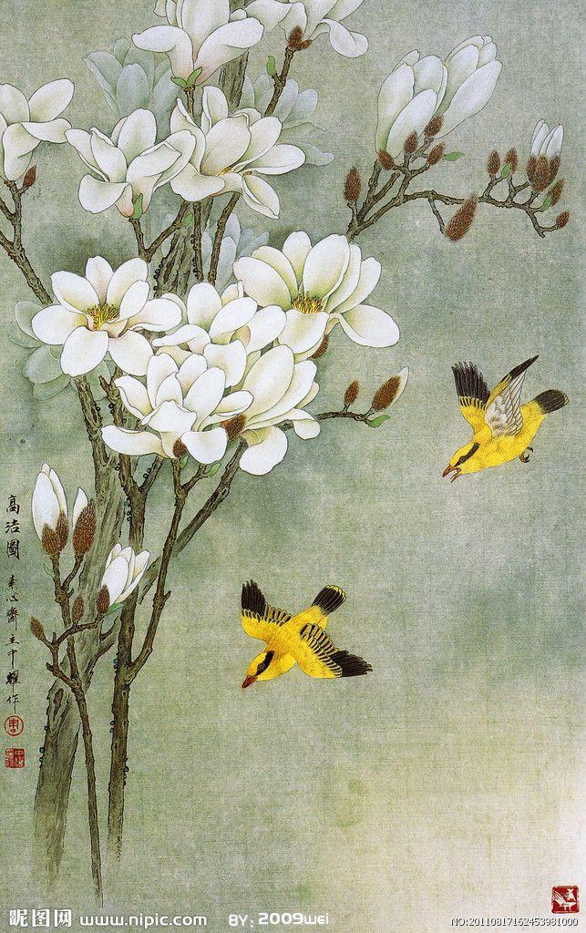 白玉兰花国画写意图片展示图片图片