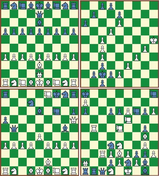 两位是中国象棋的顶尖高手!图片