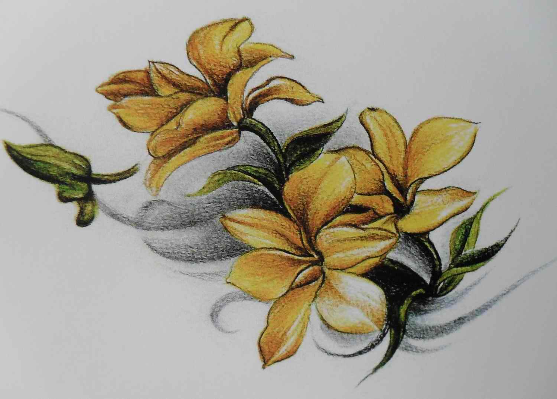 腰部性感的海马花藤女生纹身图图片