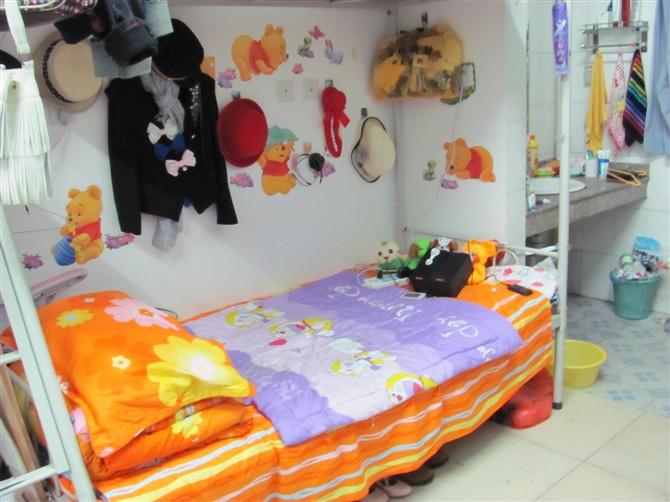 校园223寝室艳史