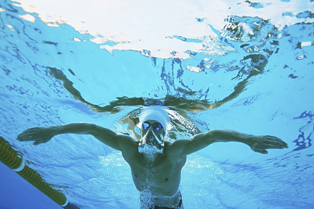 蛙泳高肘姿势图片 蛙泳的正确腿姿势图解 蛙泳姿势动画图解