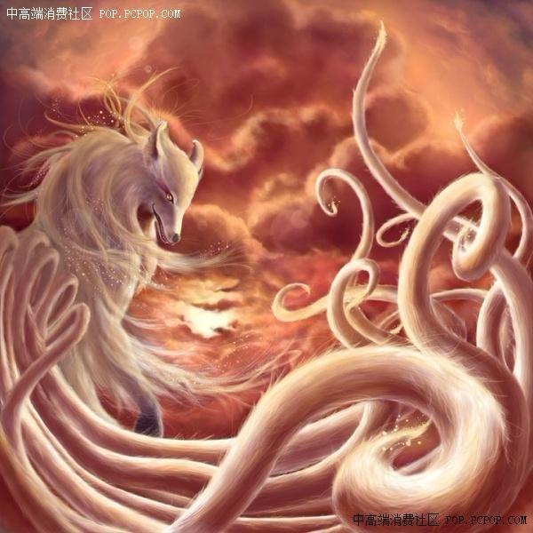 ... 爪金龙-1中国神兽九爪金龙 中国神兽5爪金龙图片