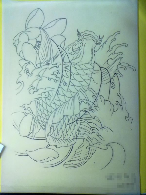 传统鲤鱼纹身手稿图片图片