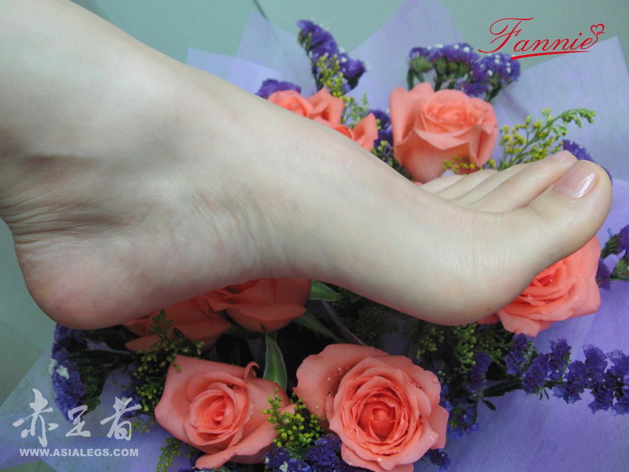 最美的脚有图片