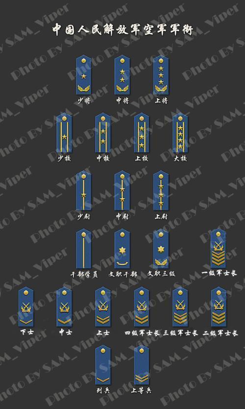 臂章是分军区.   这是二炮臂章,二炮全名是中国战略导弹部队