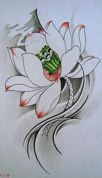 纹身素材专题贴(59).荷花 (346x600)图片