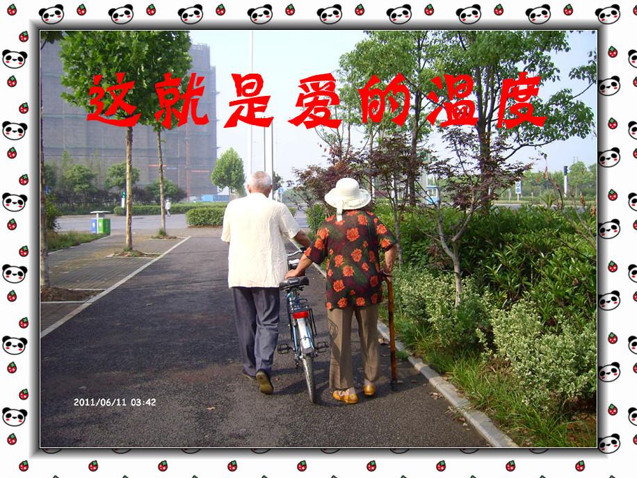 背影 手牵手拉着行李 老夫妻牵手背影唯美 图片之家-tupuanzhijia.cn