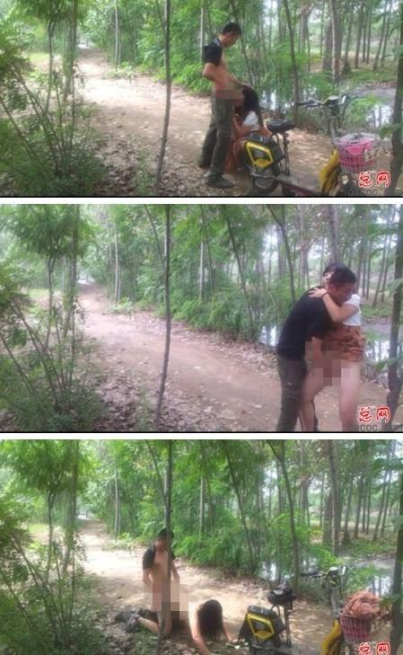 阳谷小树林完整图片