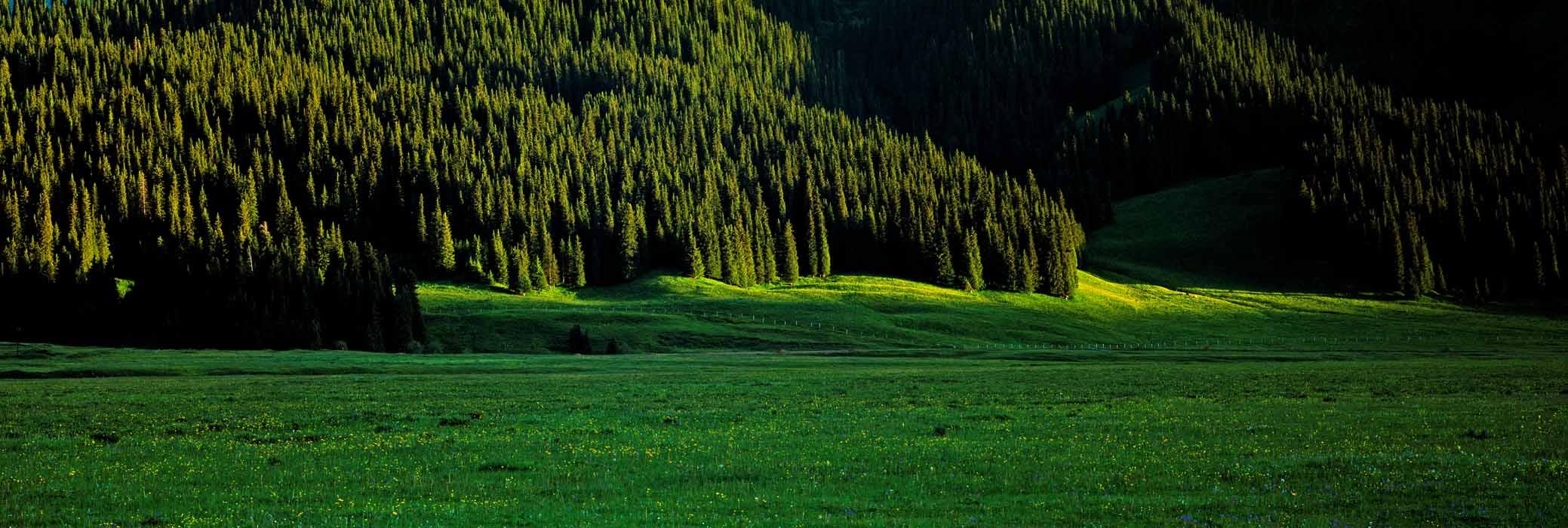 景点; 巴音布鲁克草原 的