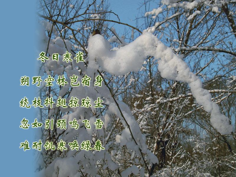 描写雪诗句图片