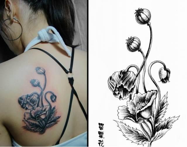令人窒息的美 罂粟花纹身图片