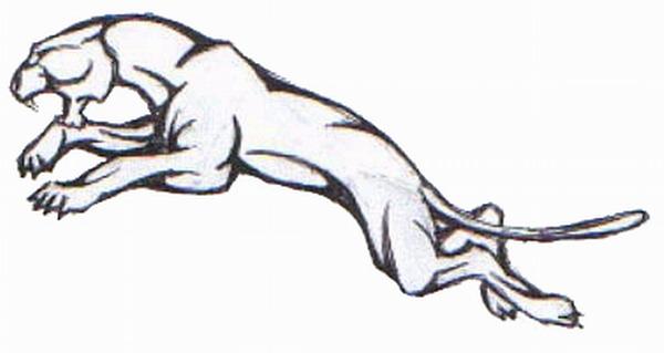 男生手臂帅气的图腾豹子纹身