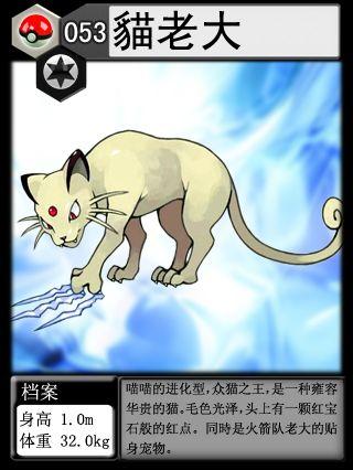 喵喵为什么讨厌猫老大