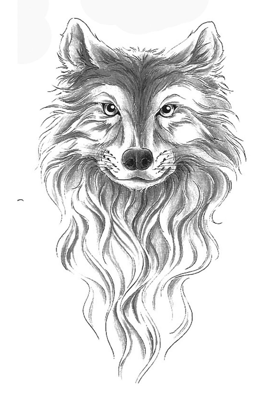 小狼头纹身手稿分享展示图片