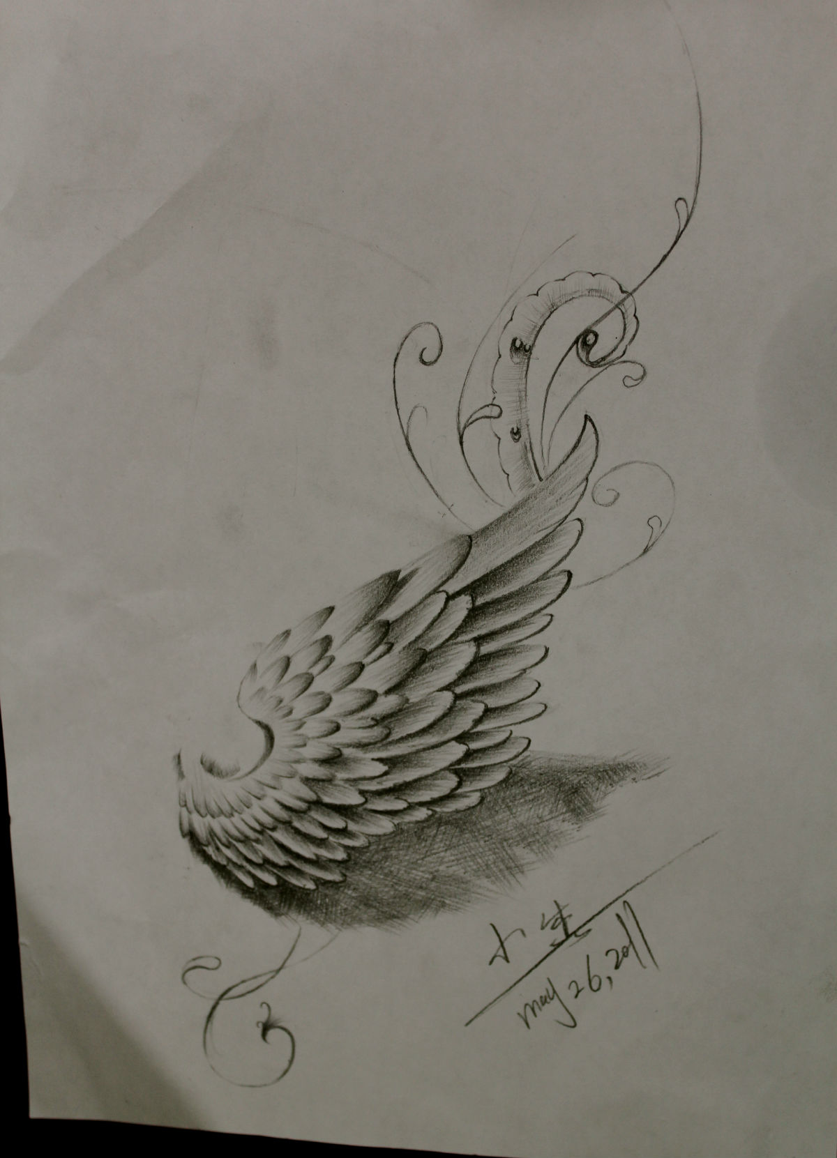 翅膀素材专题贴(56).纹身室内设计师陈述图片
