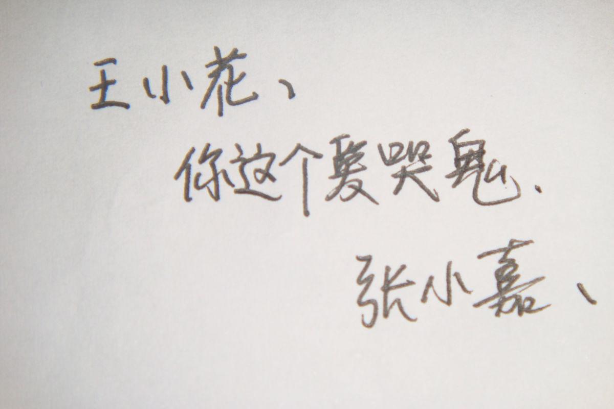 手写钢笔字体 最新图片第2页 动手网