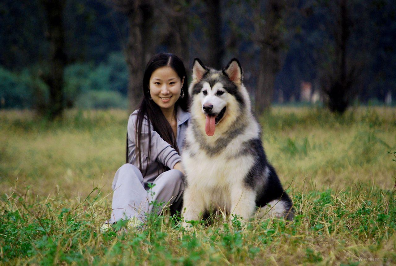 美女和动物