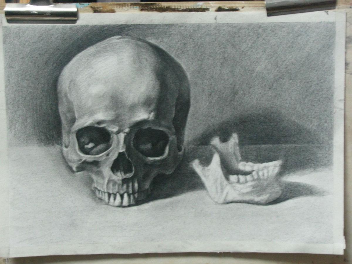 素描骷髅头 画法 ||玫瑰 素描画法 || 超写实眼睛素描画法-超写实眼睛素图片