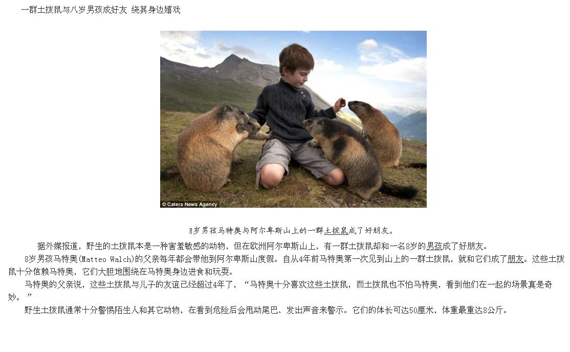奇妙!一群土拨鼠与八岁好友