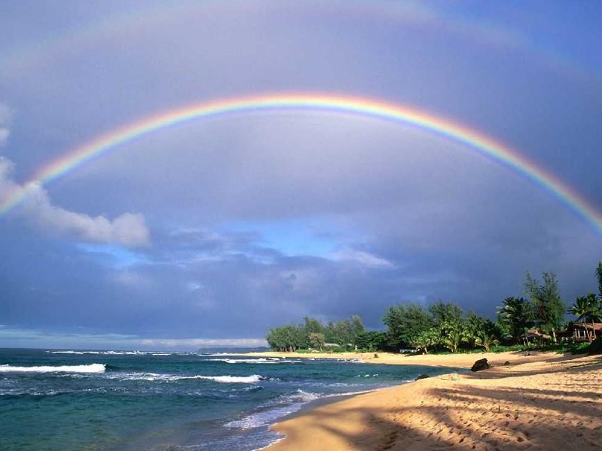 阳光总在风雨后原唱_阳光总在风雨后陈佳明词曲简谱大众乐谱