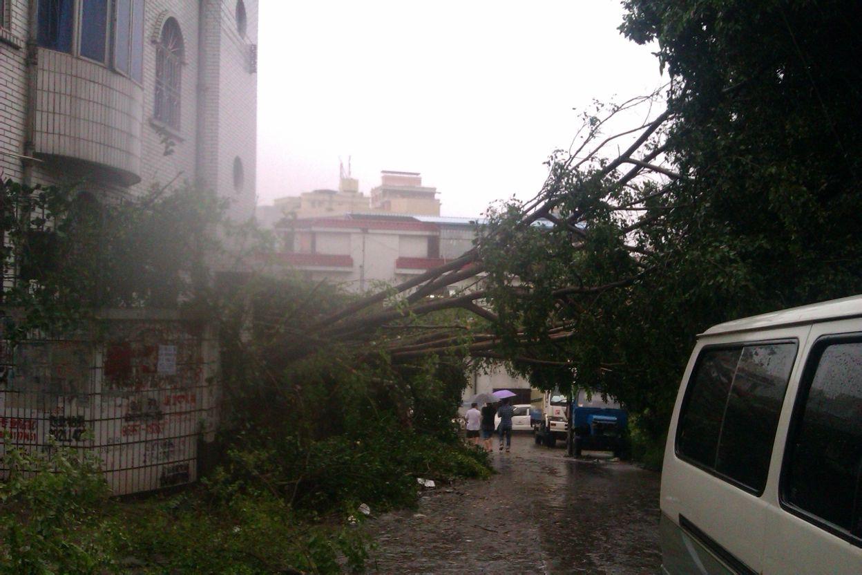 圳刮台风了
