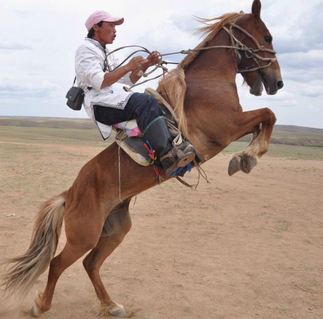 乌拉特中旗蒙古人形象图片