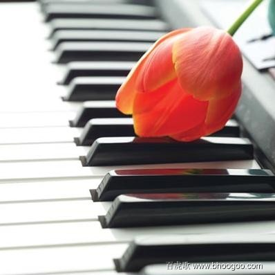 下面是一些关于钢琴的美图图片