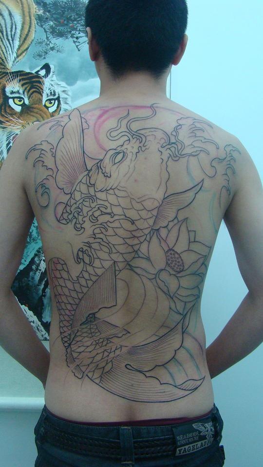 纹身鲤鱼图案后背线条分享展示图片